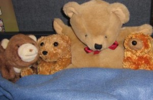 For Kids: Stuffed Animal Sleepover--Cherrydale
