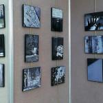 Rachel Mai Tran Photographs