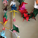 McKinley Students 1,000 Cranes Project