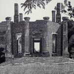 M. Alexander Gray: Prints