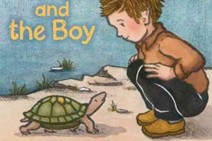 5 Picture Books about Turtles