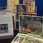Do You Know Billie the Elephant?