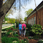 Girl Scouts Visit the Glencarlyn Community Garden