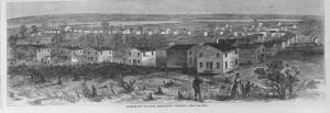 freedmans village