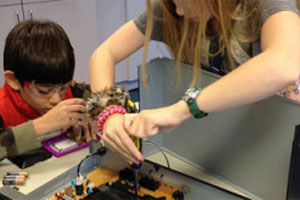 Maker Workshops for Grades 3-6