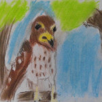 Trail Tales: Animal Artwork by Harvey Hall Students
